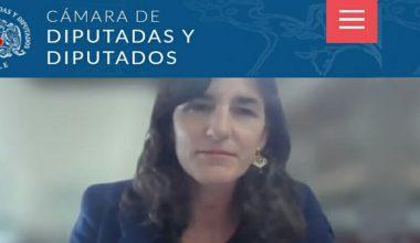 Directora del CEFIS, invitada a comentar proyecto de Ley de Donaciones en la Cámara de Diputados
